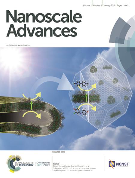 Nanoscale Advances cover.